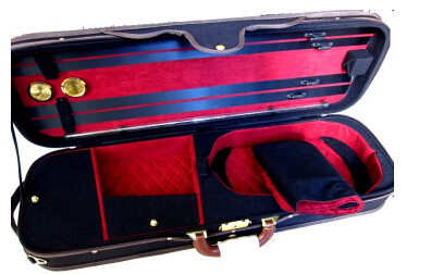 Violin Professional wooden case