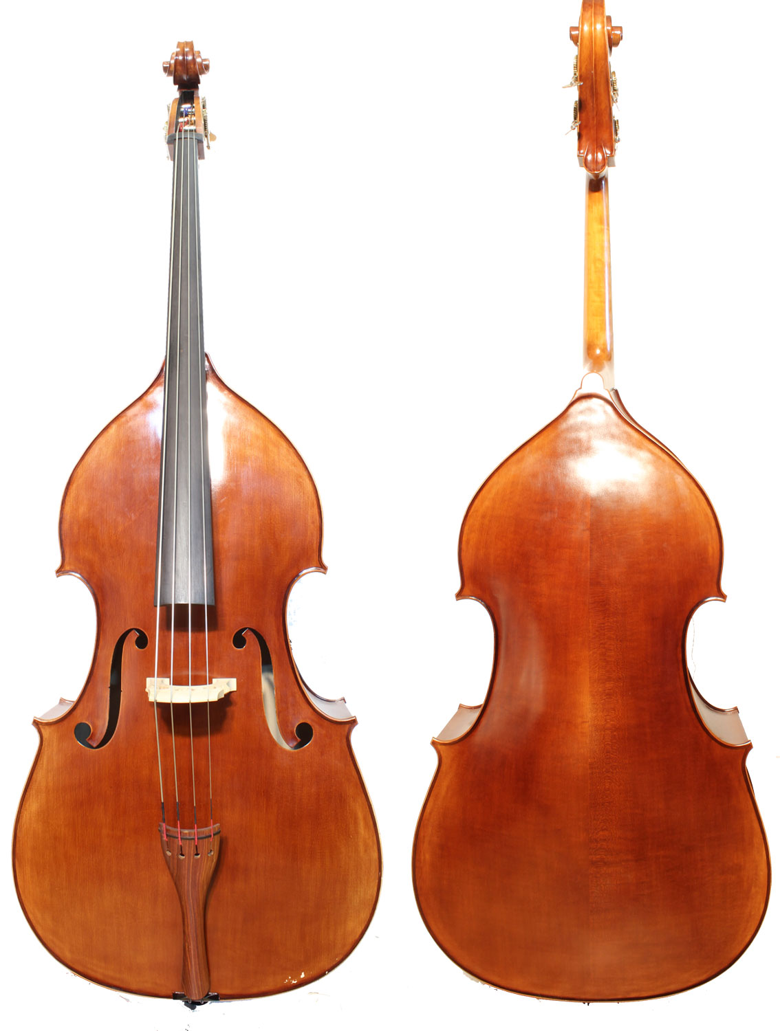 Rhapsoday Student Double Bass